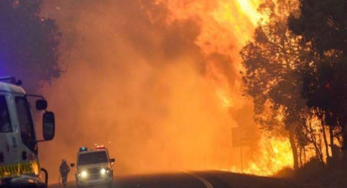 آسٹریلیا کی جنگلاتی آگ کی وجہ سے4 ہزار لوگ ساحل پر پھنس گئے