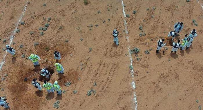 لیبیا میں اجتماعی قبروں کی دریافت، 225 نعشیں برآمد